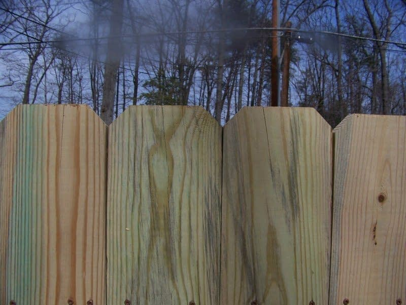 dog fences in Charles County