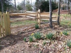 new fence by Thomas fence